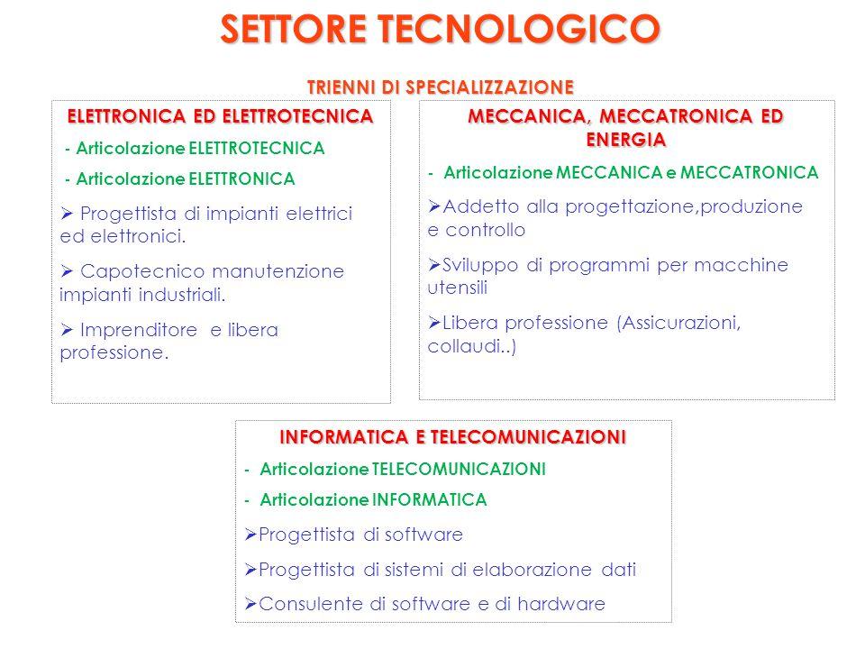 SETTORE TECNOLOGICO TRIENNI DI SPECIALIZZAZIONE ELETTRONICA ED ELETTROTECNICA - Articolazione ELETTROTECNICA - Articolazione ELETTRONICA  Progettista