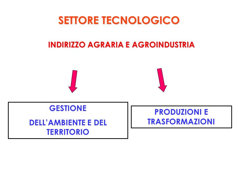 INDIRIZZO AGRARIA E AGROINDUSTRIA PRODUZIONI E TRASFORMAZIONI GESTIONE DELL'AMBIENTE E DEL TERRITORIO SETTORE TECNOLOGICO