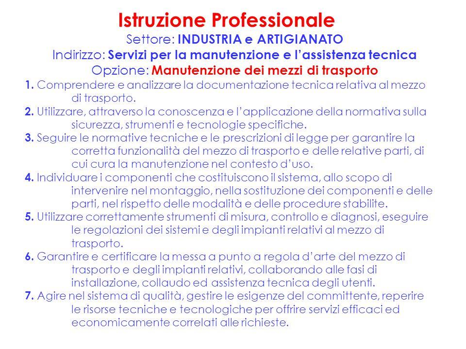 Istruzione Professionale Settore: INDUSTRIA e ARTIGIANATO Indirizzo: Servizi per la manutenzione e l'assistenza tecnica Opzione: Manutenzione dei mezz