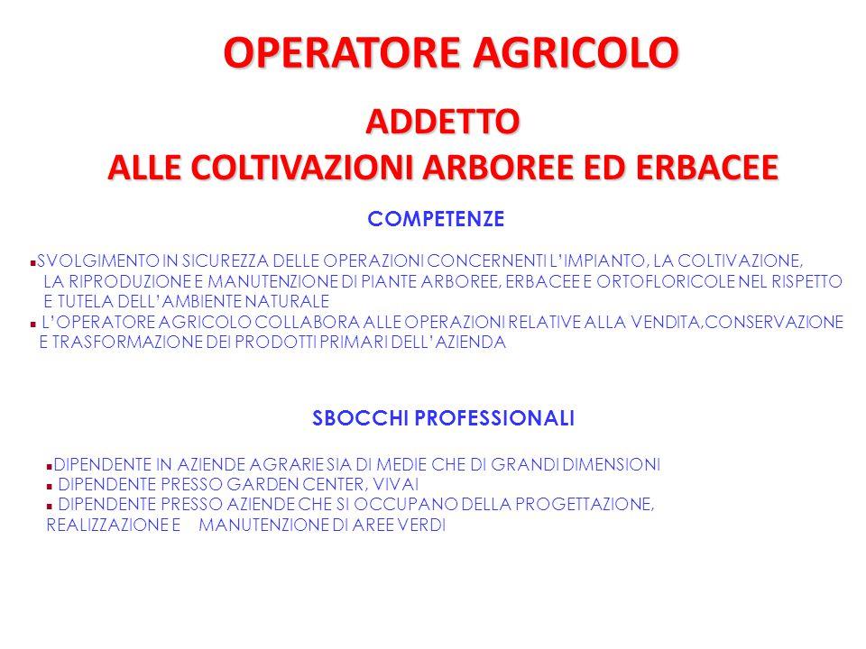 OPERATORE AGRICOLO ADDETTO ALLE COLTIVAZIONI ARBOREE ED ERBACEE COMPETENZE SVOLGIMENTO IN SICUREZZA DELLE OPERAZIONI CONCERNENTI L'IMPIANTO, LA COLTIV