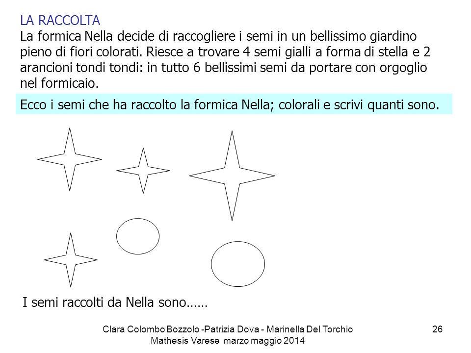 Clara Colombo Bozzolo -Patrizia Dova - Marinella Del Torchio Mathesis Varese marzo maggio 2014 26 LA RACCOLTA La formica Nella decide di raccogliere i