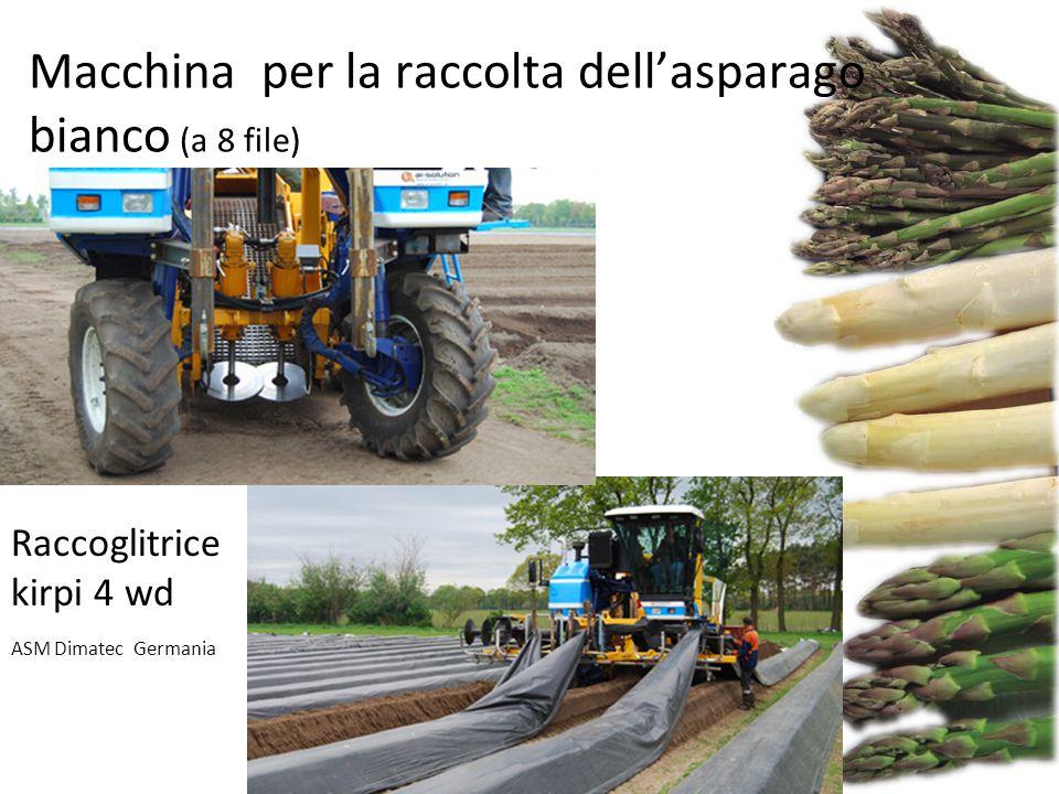 Raccoglitrice kirpi 4 wd ASM Dimatec Germania Macchina per la raccolta dell'asparago bianco (a 8 file)