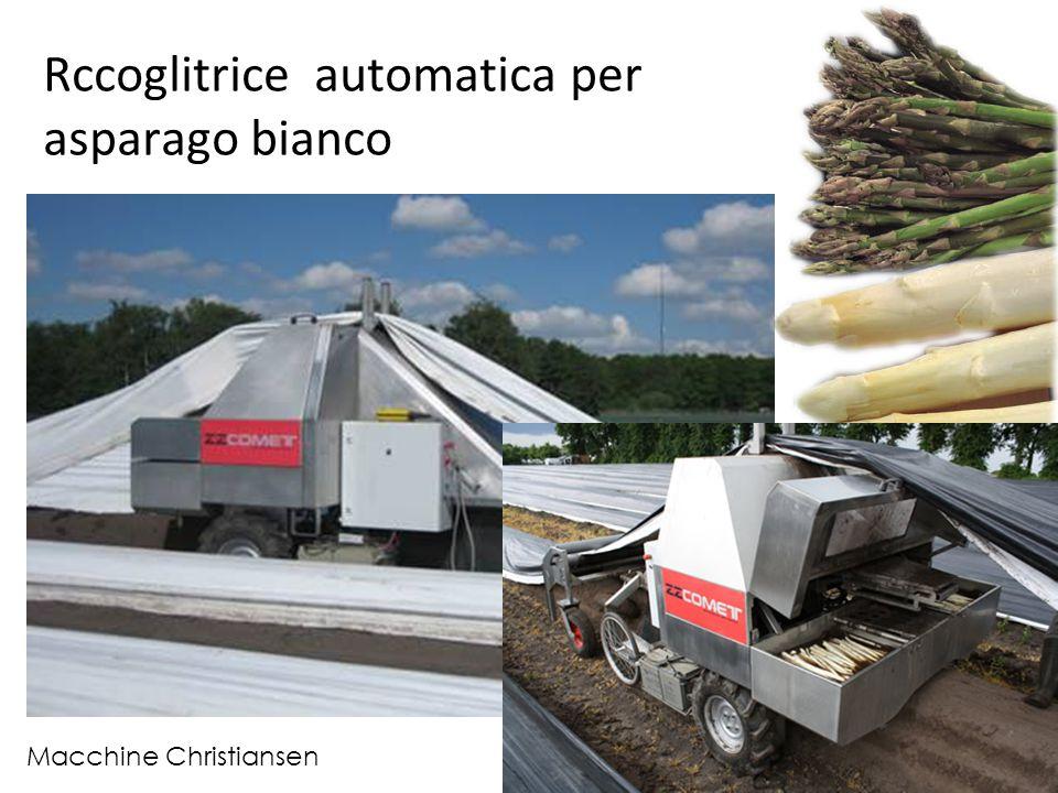 Rccoglitrice automatica per asparago bianco Macchine Christiansen
