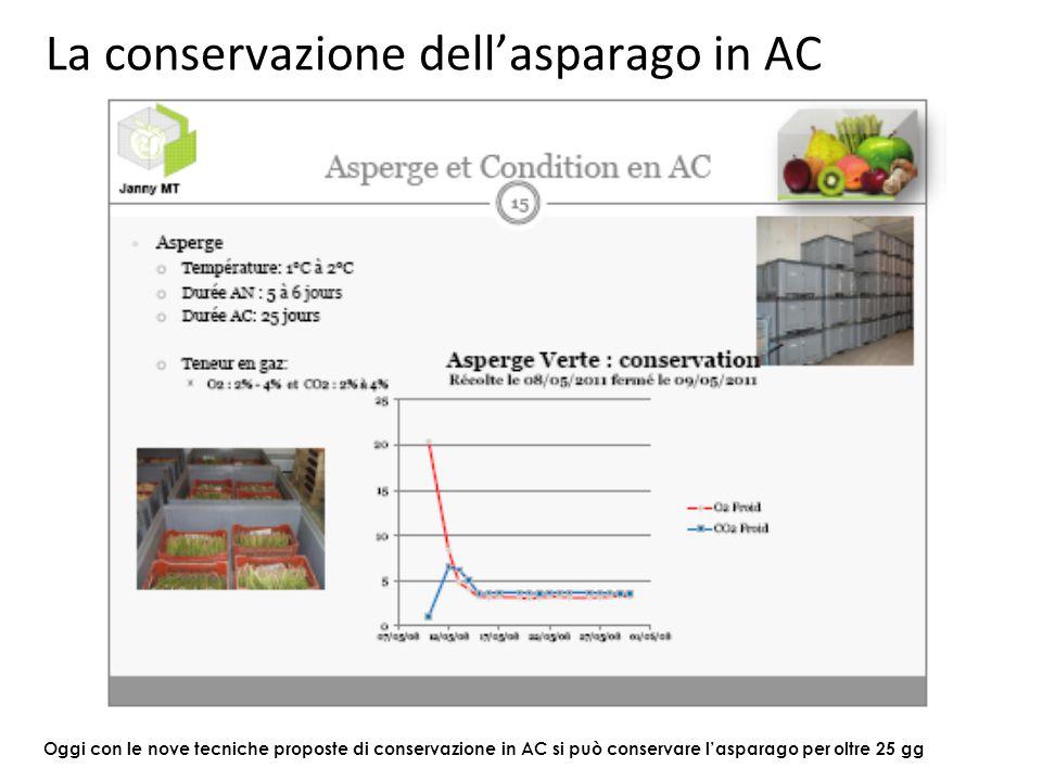 La conservazione dell'asparago in AC Oggi con le nove tecniche proposte di conservazione in AC si può conservare l'asparago per oltre 25 gg