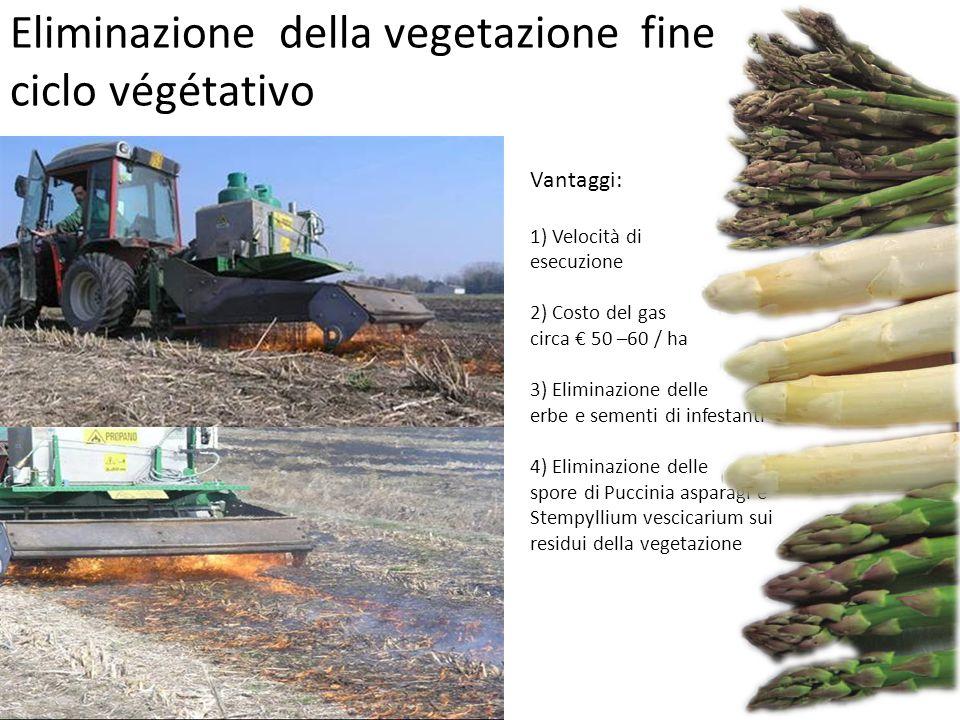 Vantaggi: 1) Velocità di esecuzione 2) Costo del gas circa € 50 –60 / ha 3) Eliminazione delle erbe e sementi di infestanti 4) Eliminazione delle spor