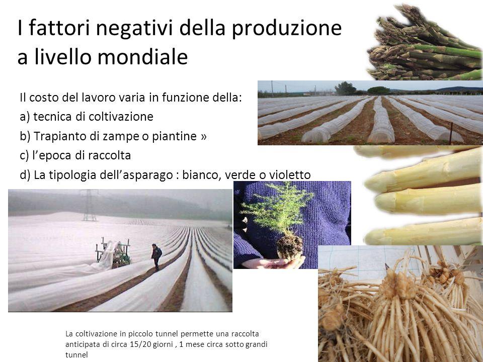 I fattori negativi della produzione a livello mondiale Il costo del lavoro varia in funzione della: a) tecnica di coltivazione b) Trapianto di zampe o