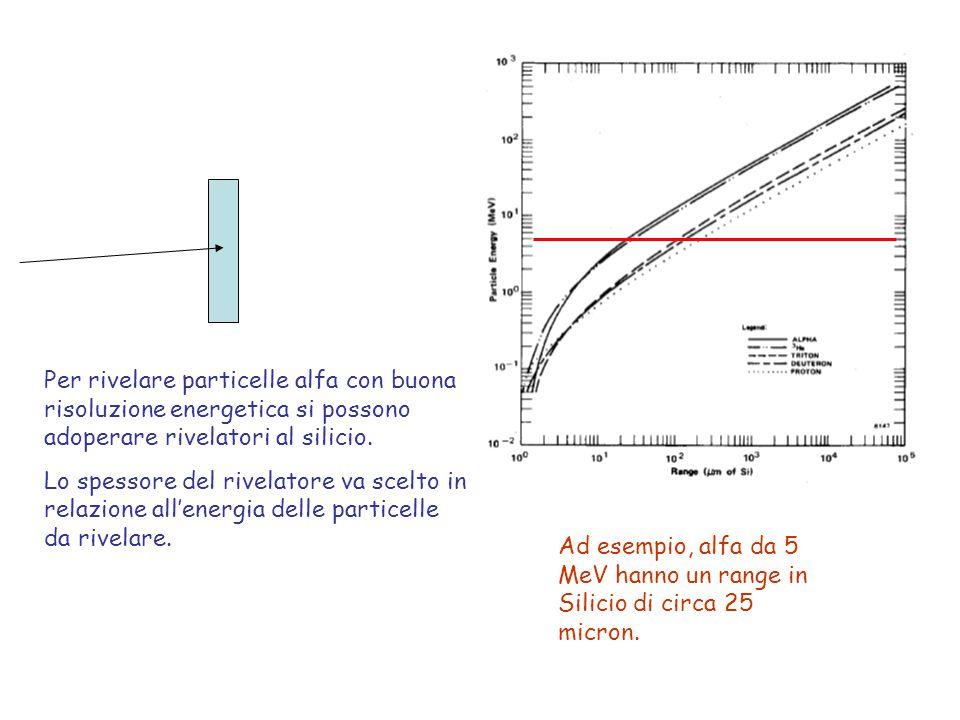 Attività sperimentali 1.Misura dello spettro alfa e calibrazione in energia Adoperando una sorgente mixed (presenza di diversi isotopi noti) misurare lo spettro in energia delle particella alfa emesse ed effettuare una calibrazione in energia dello spettro Aspetti da considerare: - Tempo di misura - Identificazione picchi principali e picchi satelliti Isotopo Energia (MeV) Intensità (%) Np-2374.6406,2 4.7668 4.77225 4.78847 Am-2415.3881,4 5.44312,8 5.48685,2 Cm-2445.76323,3 5.80576,7