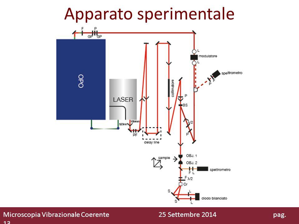Apparato sperimentale Microscopia Vibrazionale Coerente 25 Settembre 2014 pag. 13
