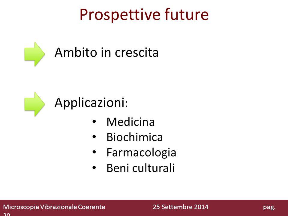 Prospettive future Medicina Biochimica Farmacologia Beni culturali Applicazioni : Ambito in crescita Microscopia Vibrazionale Coerente 25 Settembre 20