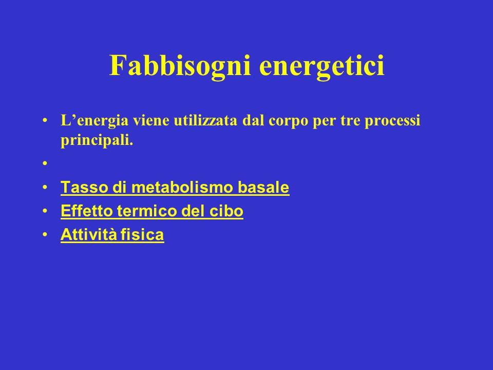 Fabbisogni energetici L'energia viene utilizzata dal corpo per tre processi principali. Tasso di metabolismo basale Effetto termico del cibo Attività