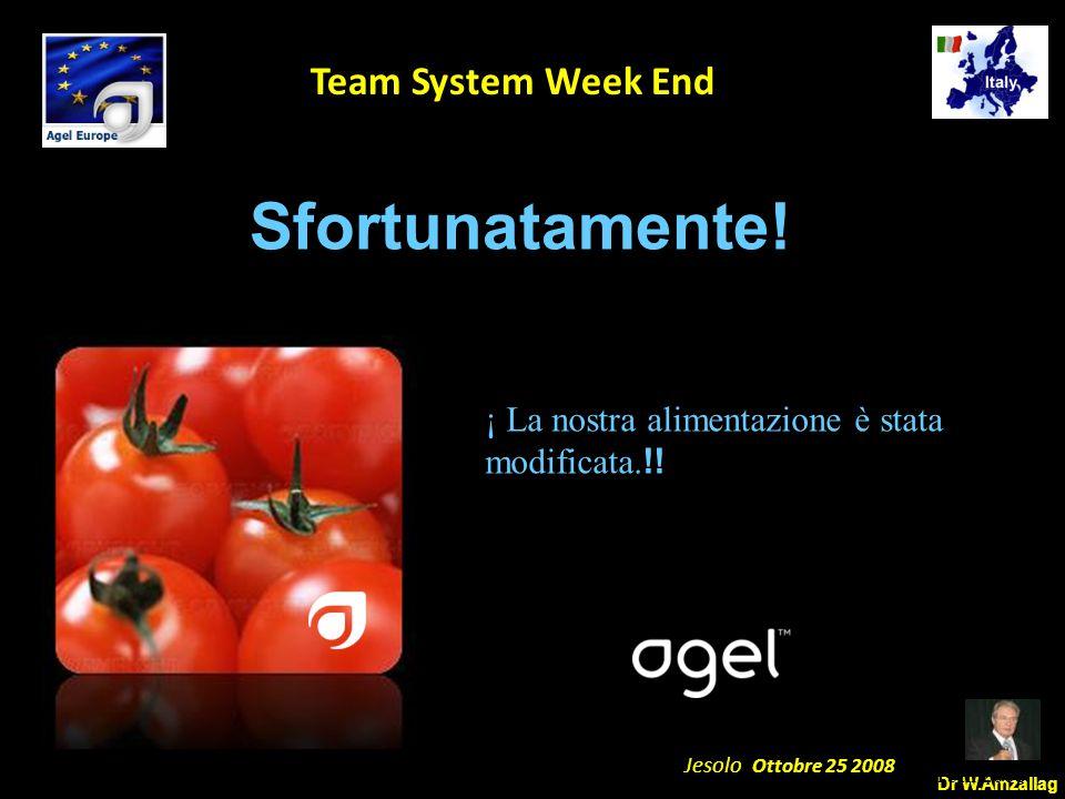 Dr W.Amzallag Jesolo Ottobre 25 2008 5 Team System Week End Sfortunatamente! April 5th 2008 ¡ La nostra alimentazione è stata modificata. !!