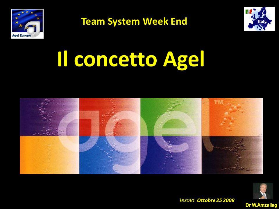 Dr W.Amzallag Jesolo Ottobre 25 2008 5 Team System Week End Il concetto Agel