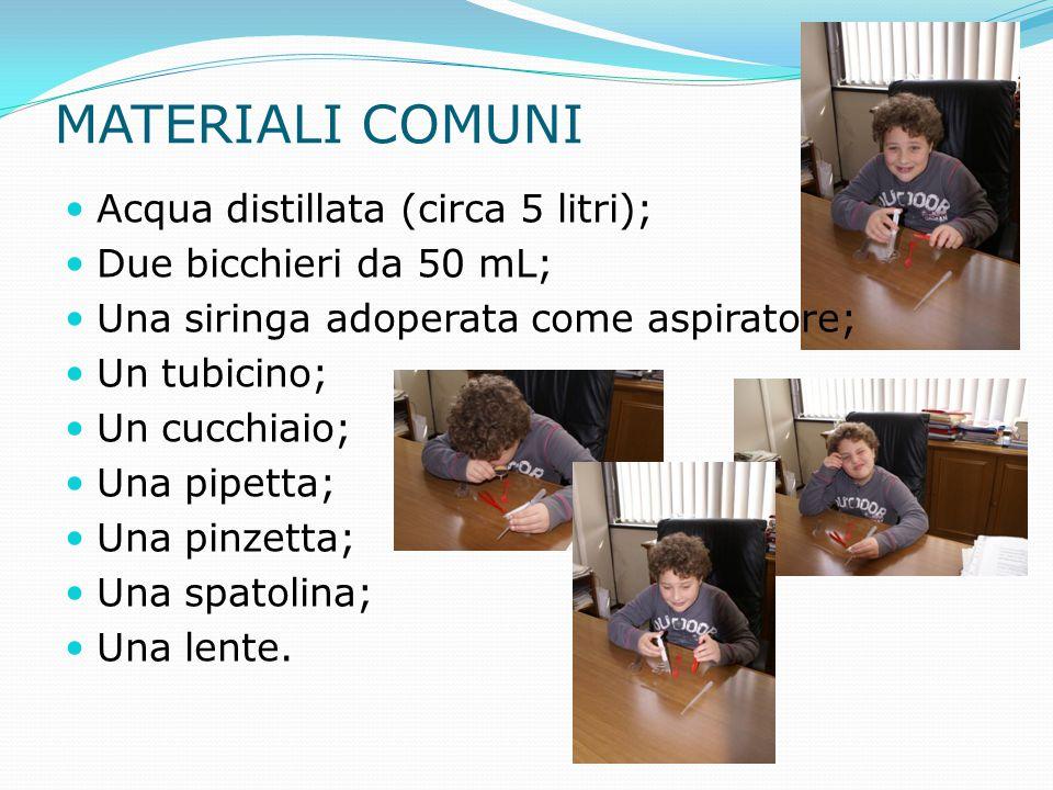 MATERIALI COMUNI Acqua distillata (circa 5 litri); Due bicchieri da 50 mL; Una siringa adoperata come aspiratore; Un tubicino; Un cucchiaio; Una pipet