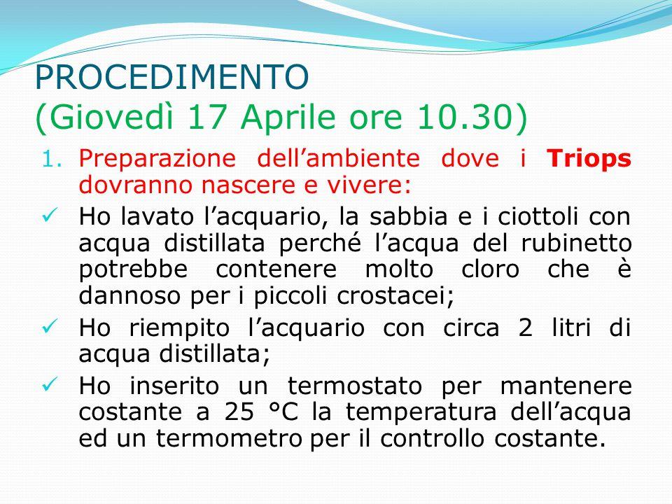 PROCEDIMENTO (Giovedì 17 Aprile ore 10.30) 1. Preparazione dell'ambiente dove i Triops dovranno nascere e vivere: Ho lavato l'acquario, la sabbia e i