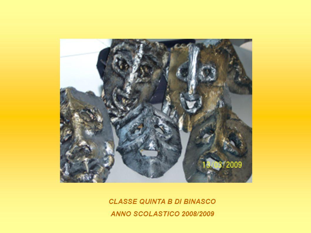 CLASSE QUINTA B DI BINASCO ANNO SCOLASTICO 2008/2009