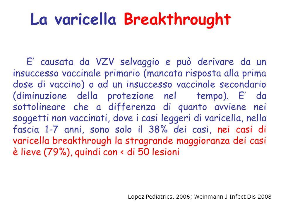 E' causata da VZV selvaggio e può derivare da un insuccesso vaccinale primario (mancata risposta alla prima dose di vaccino) o ad un insuccesso vaccin
