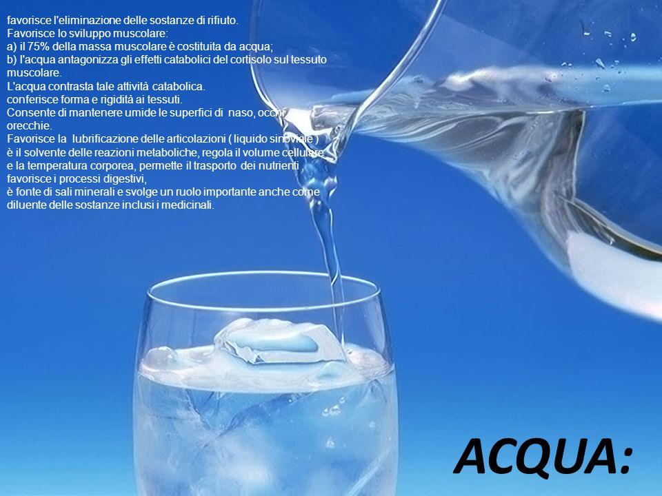 ACQUA: favorisce l'eliminazione delle sostanze di rifiuto. Favorisce lo sviluppo muscolare: a) il 75% della massa muscolare è costituita da acqua; b)