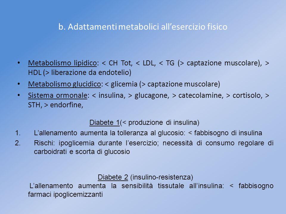 b. Adattamenti metabolici all'esercizio fisico Metabolismo lipidico: captazione muscolare), > HDL (> liberazione da endotelio) Metabolismo glucidico: