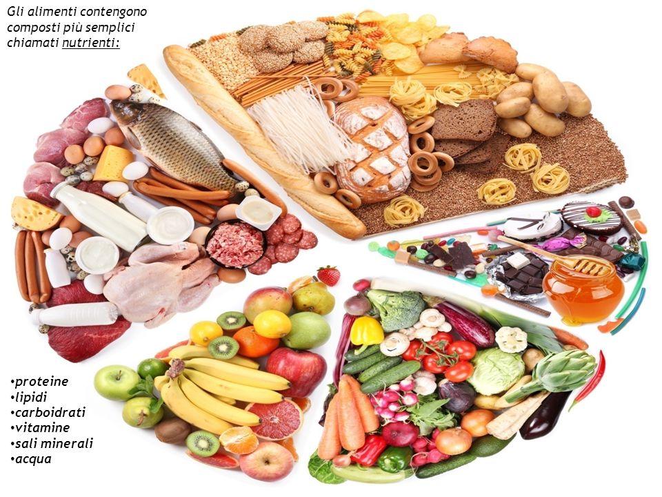 Gli alimenti contengono composti più semplici chiamati nutrienti: proteine lipidi carboidrati vitamine sali minerali acqua