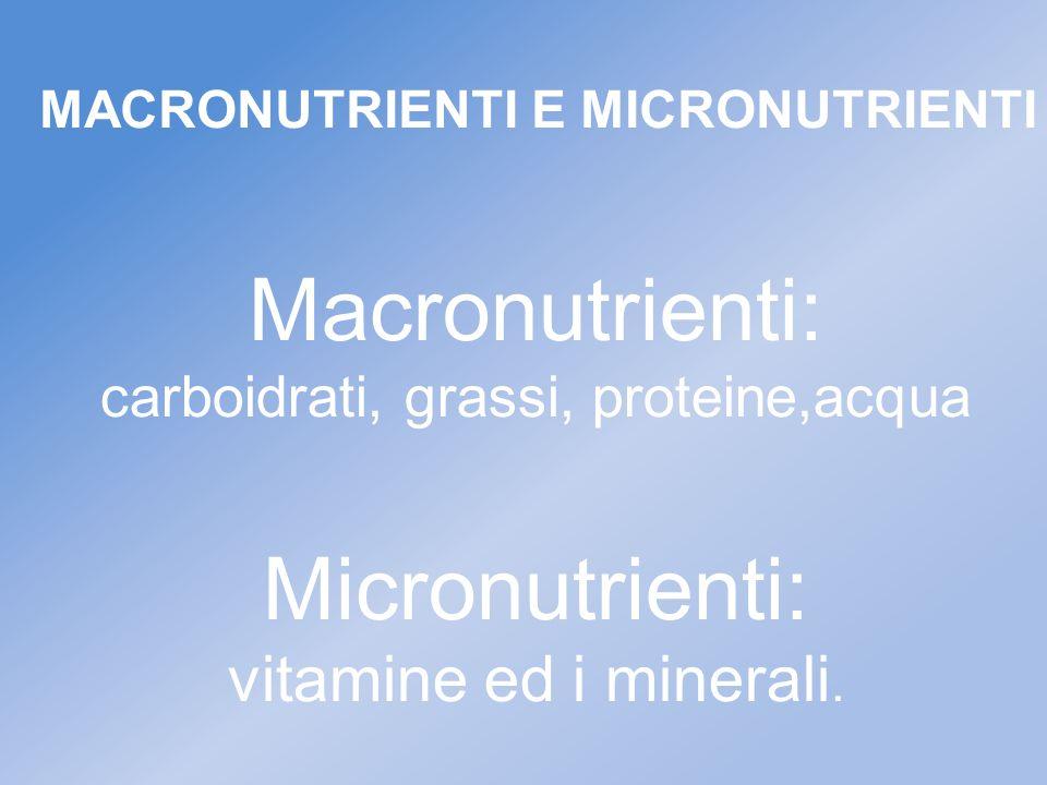 Macronutrienti: carboidrati, grassi, proteine,acqua Micronutrienti: vitamine ed i minerali. MACRONUTRIENTI E MICRONUTRIENTI