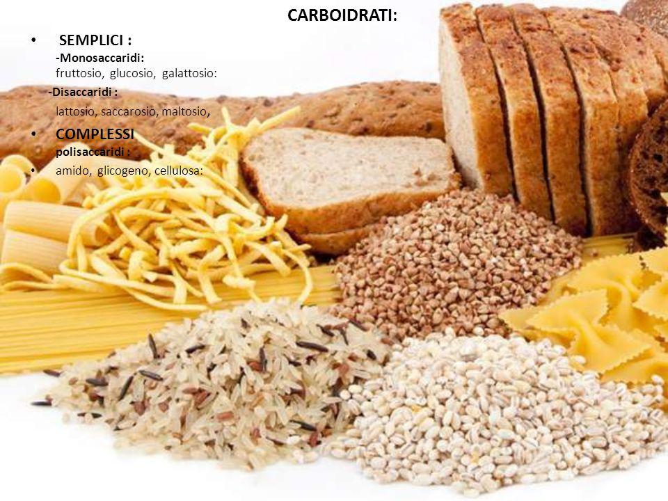 CARBOIDRATI: SEMPLICI : -Monosaccaridi: fruttosio, glucosio, galattosio: -Disaccaridi : lattosio, saccarosio, maltosio, COMPLESSI polisaccaridi : amid