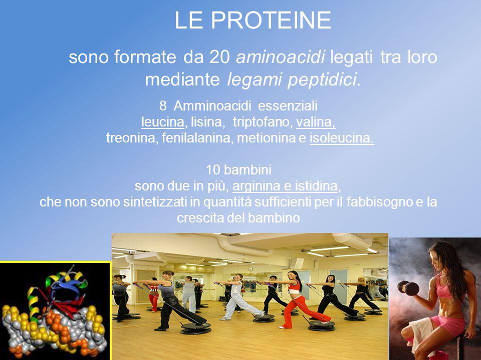 LE PROTEINE sono formate da 20 aminoacidi legati tra loro mediante legami peptidici. 8 Amminoacidi essenziali leucina, lisina, triptofano, valina, tre