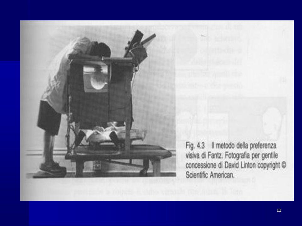12 Gibson e Walk (1961): Gibson e Walk (1961): Utilizzando la tecnica del precipizio visivo rilevarono che già a 5-6 mesi i bambini percepiscono la profonditàUtilizzando la tecnica del precipizio visivo rilevarono che già a 5-6 mesi i bambini percepiscono la profondità