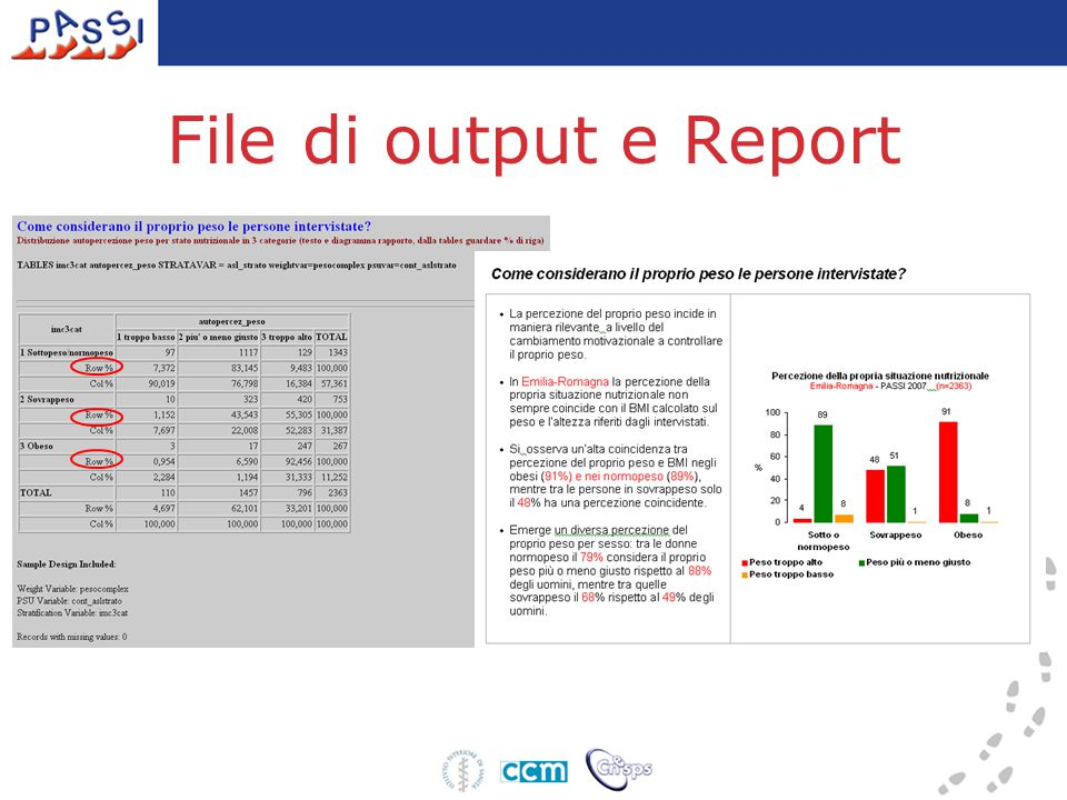 File di output e Report