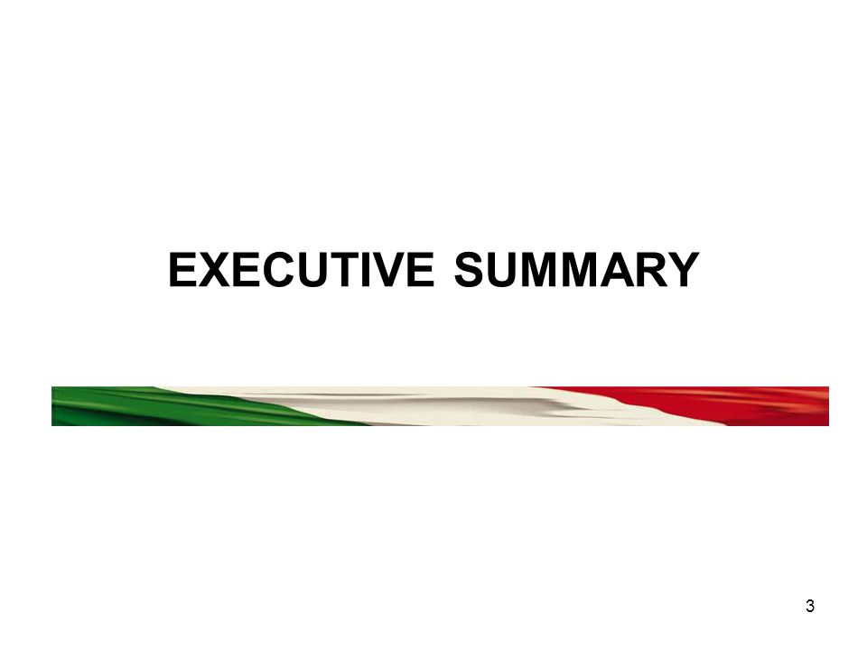 3 EXECUTIVE SUMMARY