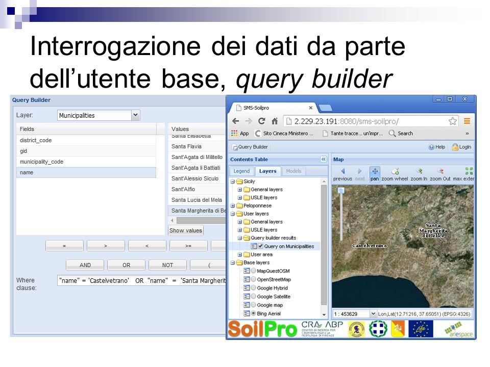 Interrogazione dei dati da parte dell'utente base, query builder