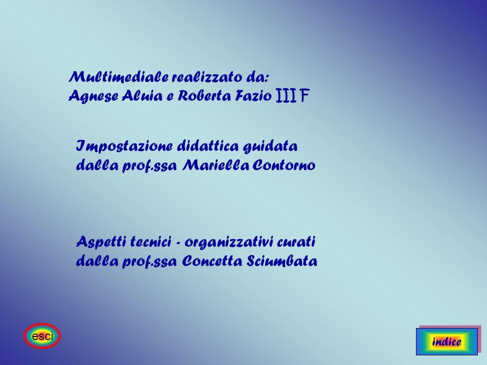 Multimediale realizzato da: Agnese Aluia e Roberta Fazio III F Impostazione didattica guidata dalla prof.ssa Mariella Contorno Aspetti tecnici - organ