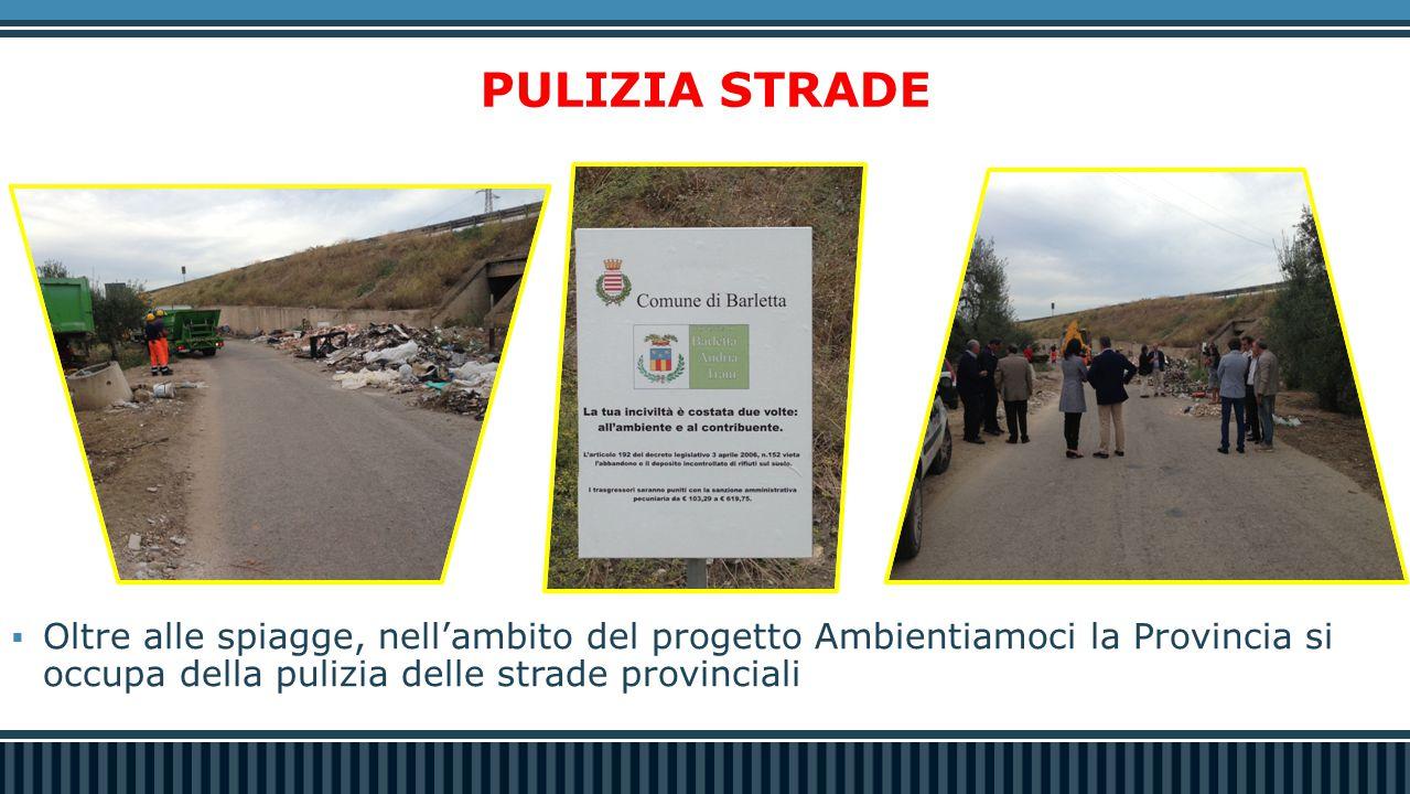 PULIZIA STRADE  Oltre alle spiagge, nell'ambito del progetto Ambientiamoci la Provincia si occupa della pulizia delle strade provinciali