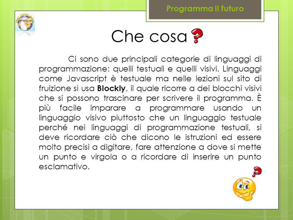 Ci sono due principali categorie di linguaggi di programmazione: quelli testuali e quelli visivi.