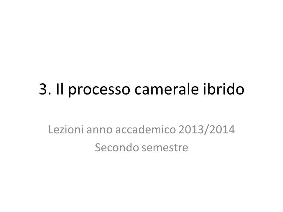 3. Il processo camerale ibrido Lezioni anno accademico 2013/2014 Secondo semestre