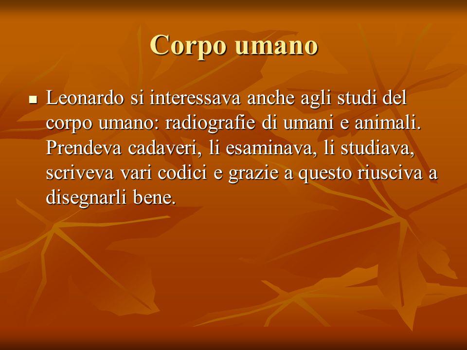 Leonardo si interessava anche agli studi del corpo umano: radiografie di umani e animali.