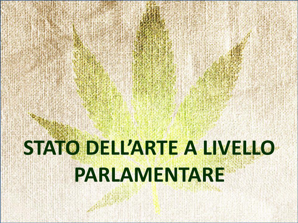 STATO DELL'ARTE A LIVELLO PARLAMENTARE