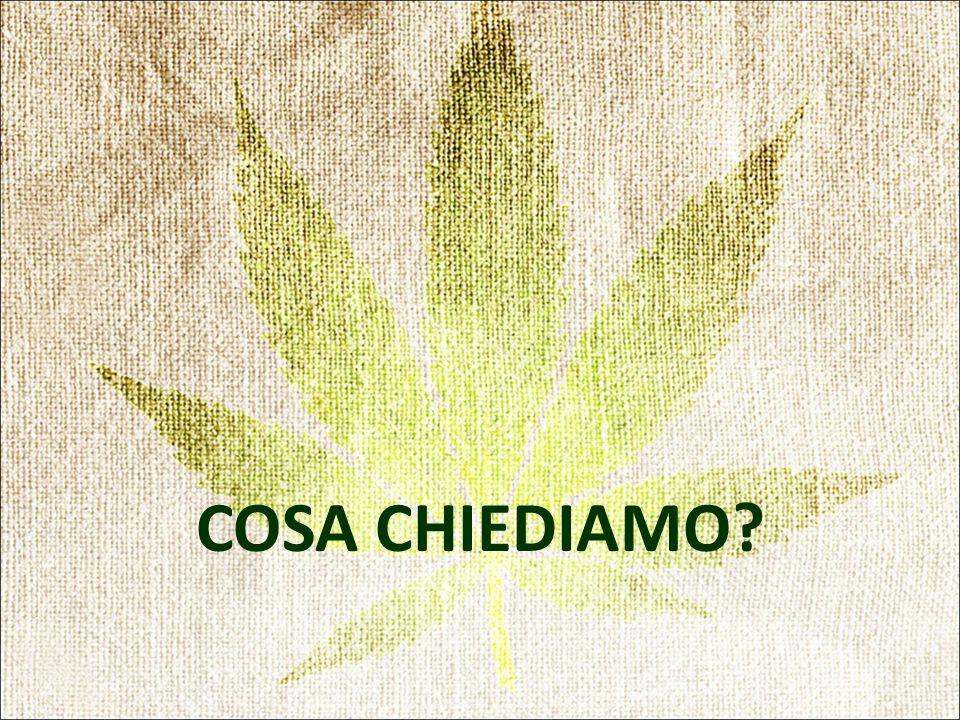 COSA CHIEDIAMO