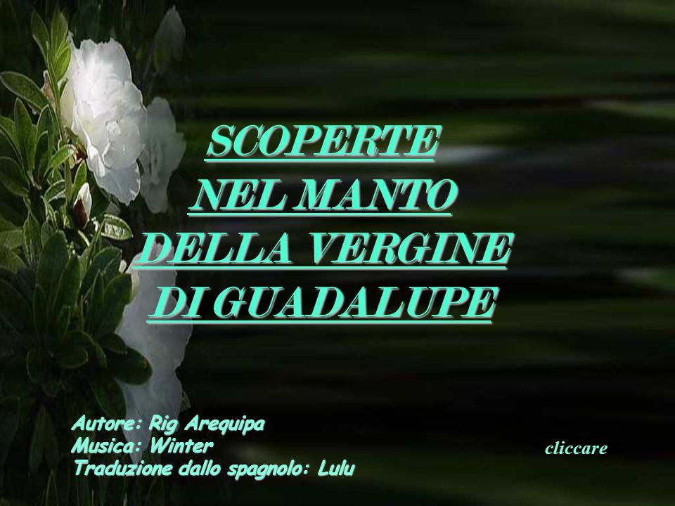 SCOPERTE NEL MANTO DELLA VERGINE DI GUADALUPE Autore: Rig Arequipa Musica: Winter Traduzione dallo spagnolo: Lulu cliccare