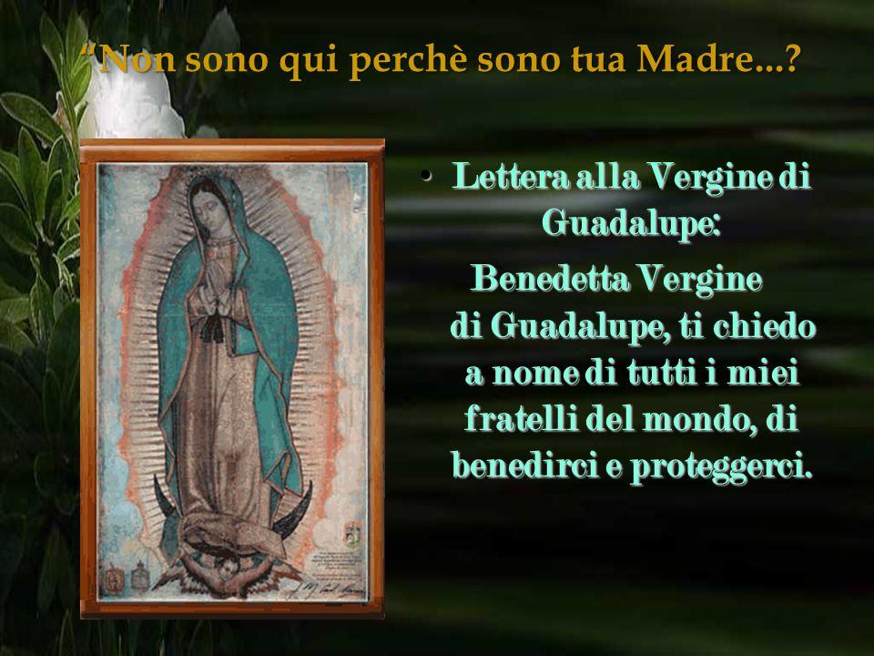 """3. La Vergine ha un nastro con dei fiocchi sul ventre, è """"incinta"""" per indicare che Dio vuole che Gesù nasca in America, nel cuore di ogni Americano."""