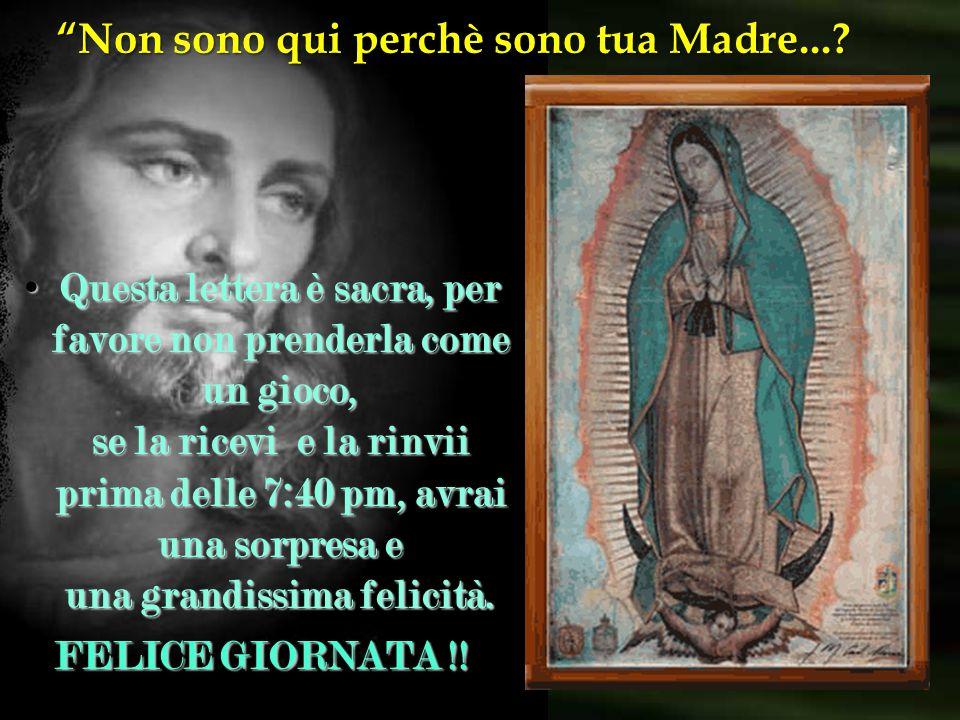 """"""" Non sono qui perchè sono tua Madre...? Non rompete questa catena, è miracolosa!!! Non rompete questa catena, è miracolosa!!! Ricorda oggi è domenica"""