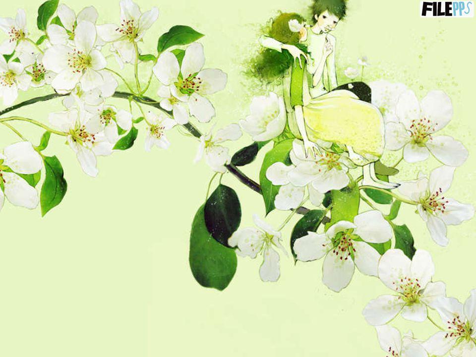 Conserva l'amore nel tuo cuore. Una vita senza amore è come un giardino senza sole dove i fiori sono morti. La coscienza di amare ed essere amati rega