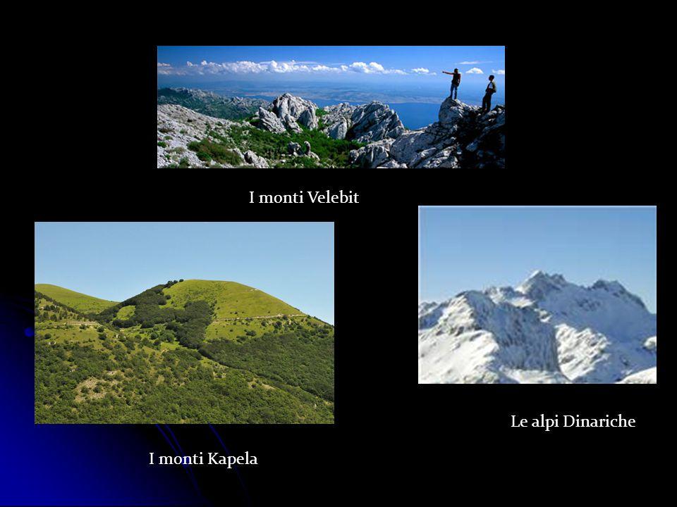 I monti Velebit I monti Kapela Le alpi Dinariche