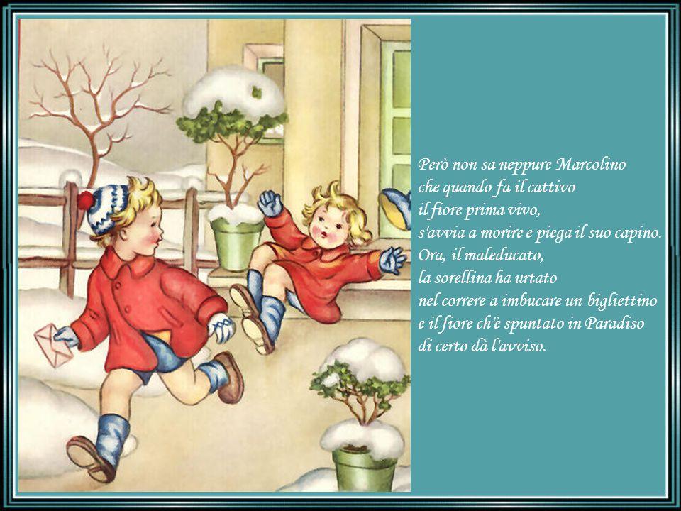 Però non sa neppure Marcolino che quando fa il cattivo il fiore prima vivo, s avvia a morire e piega il suo capino.