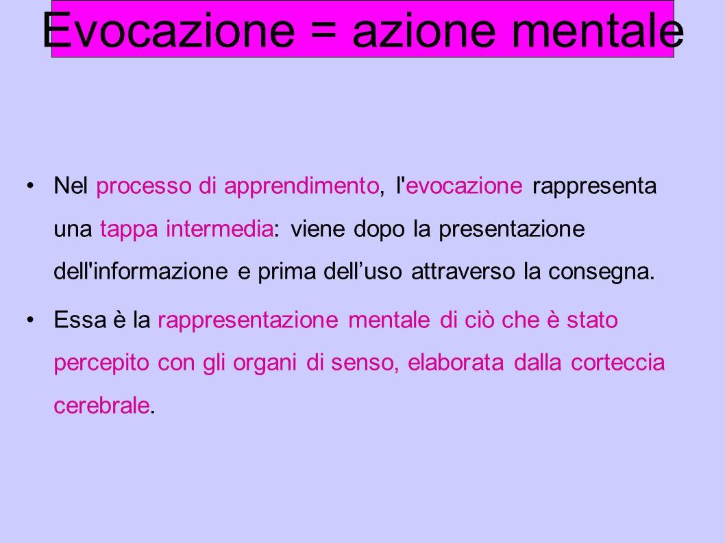 Nel processo di apprendimento, l'evocazione rappresenta una tappa intermedia: viene dopo la presentazione dell'informazione e prima dell'uso attravers