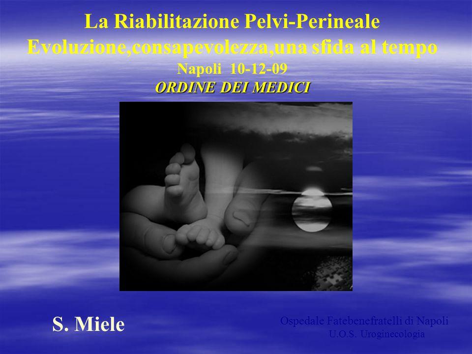 La Riabilitazione Pelvi-Perineale Evoluzione,consapevolezza,una sfida al tempo Napoli 10-12-09 ORDINE DEI MEDICI S. Miele Ospedale Fatebenefratelli di