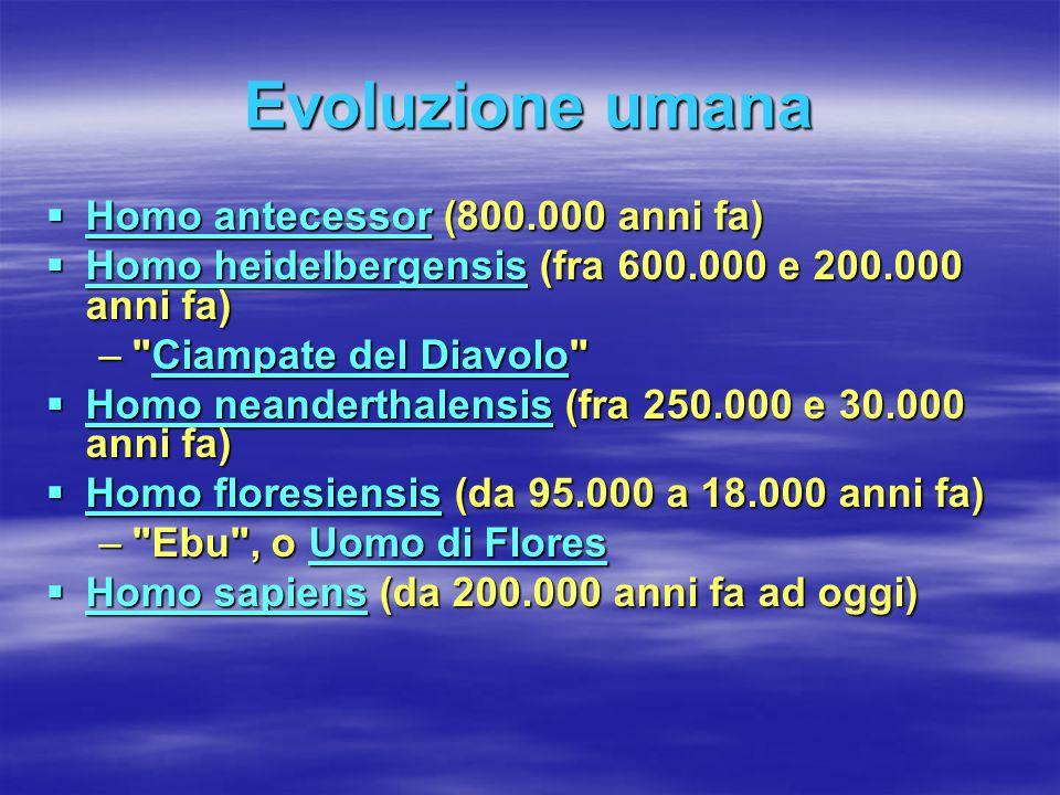 Evoluzione umana  Homo antecessor (800.000 anni fa) Homo antecessor Homo antecessor  Homo heidelbergensis (fra 600.000 e 200.000 anni fa) Homo heide