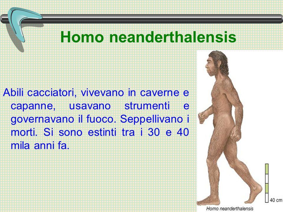 Homo neanderthalensis Abili cacciatori, vivevano in caverne e capanne, usavano strumenti e governavano il fuoco.
