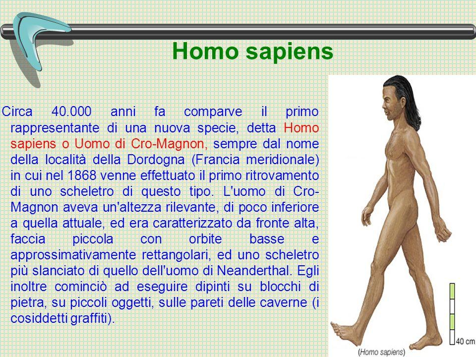 Homo sapiens Circa 40.000 anni fa comparve il primo rappresentante di una nuova specie, detta Homo sapiens o Uomo di Cro-Magnon, sempre dal nome della località della Dordogna (Francia meridionale) in cui nel 1868 venne effettuato il primo ritrovamento di uno scheletro di questo tipo.