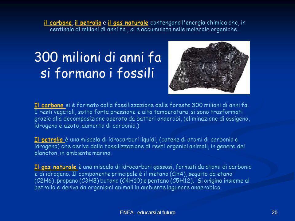 20ENEA - educarsi al futuro il carbone, il petrolio e il gas naturale contengono l energia chimica che, in centinaia di milioni di anni fa, si è accumulata nelle molecole organiche.il carboneil petrolioil gas naturale Il carbone Il carbone si è formato dalla fossilizzazione delle foreste 300 milioni di anni fa.