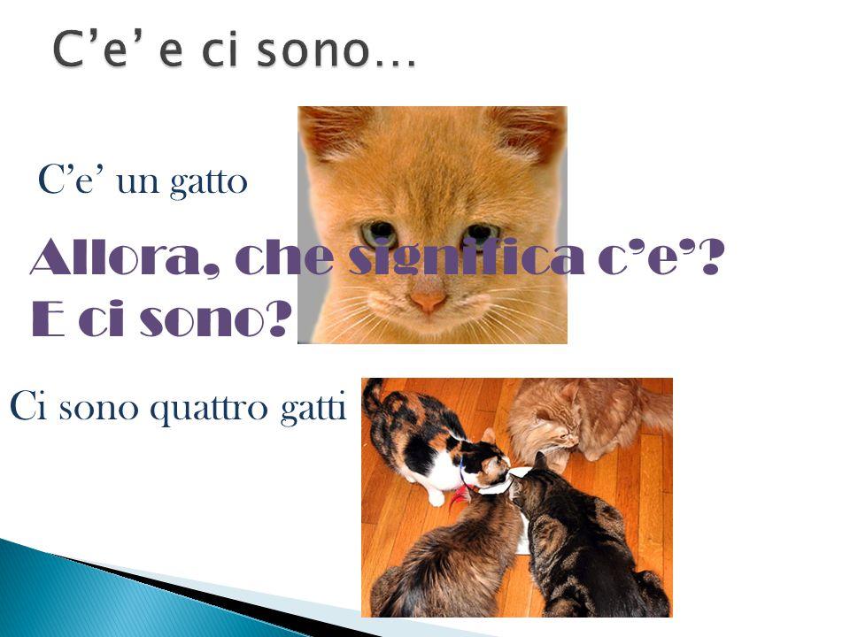 C'e' un gatto Ci sono quattro gatti Allora, che significa c'e'? E ci sono?